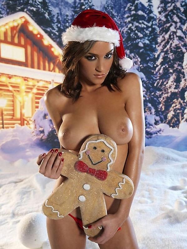 Gatas do natal